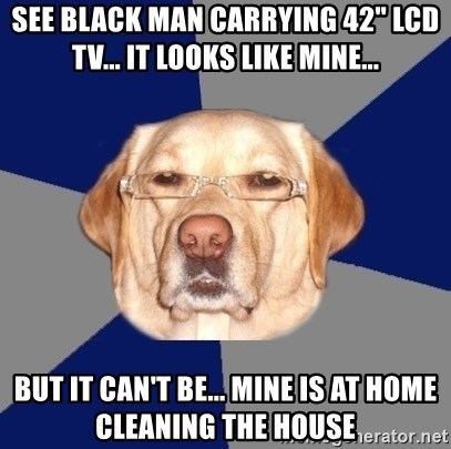 "Racist Dog - See black man carrying 42"" LCD TV... it looks like mine... but it can't be... mine is at home cleaning the house"