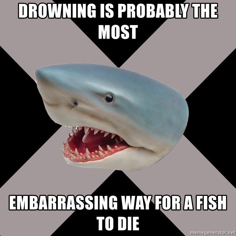 Straight Edge Shark - Drowning is probably the most EMBARRASSING way for a fish to die
