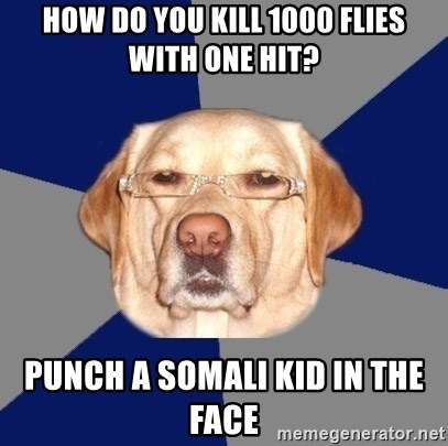 Racist Dog - hOW DO YOU KILL 1000 FLIES WITH ONE HIT? PUNCH A SOMALi kID IN THE FACE