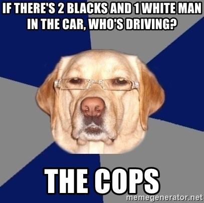 Racist Dawg - If there's 2 blacks and 1 white man in the car, who's driving? the cops