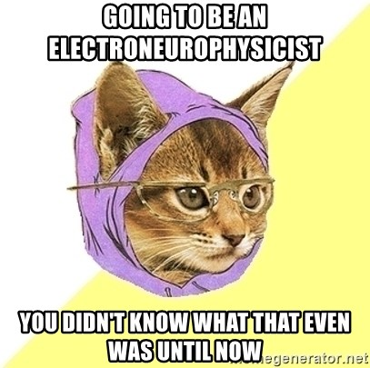 Hipster Cat - Going to be an electroneurophysicist You didn't know what that even was until now