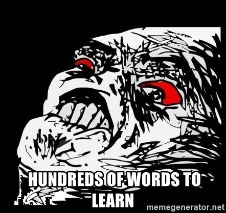 Rage Face -  HUNDREDS OF WORDS TO LEARN