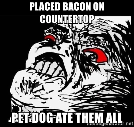 Rage Face - PLACED BACON ON COUNTERTOP PET DOG ATE THEM ALL