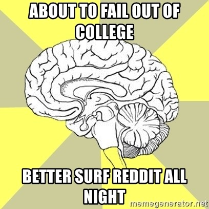 Traitor Brain - about to fail out of college better surf reddit all night