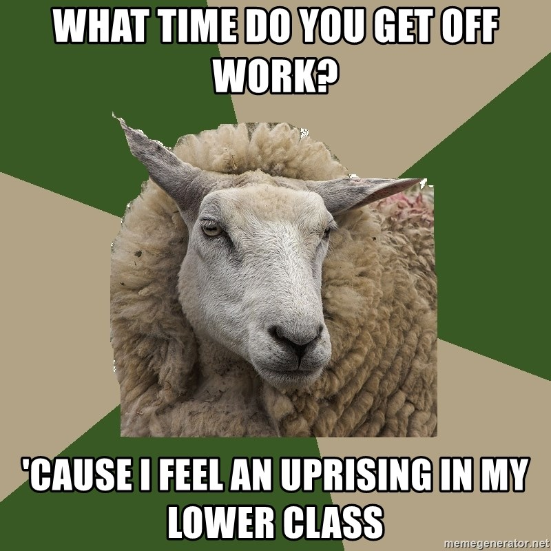 Sociology Student Sheep - What time do you get off work? 'Cause I feel an uprising in my lower class