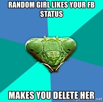 Crazy Girlfriend Praying Mantis - RANDOM GIRL LIKES YOUR FB STATUS makes you delete her