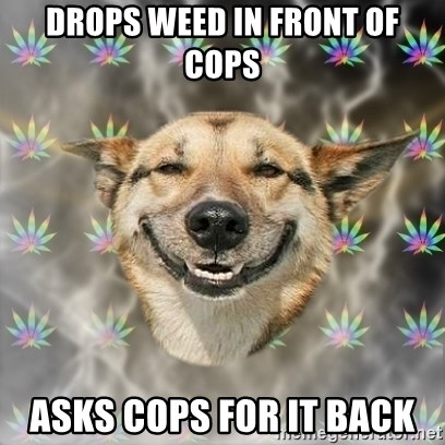 Stoner Dog - drops weed in front of cops asks cops for it back