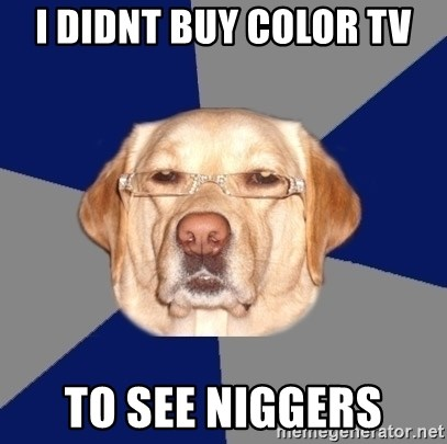 Racist Dog - I DIDNT BUY COLOR TV TO SEE NIGGERS