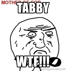 Mother Of God - tabby wtf!!!