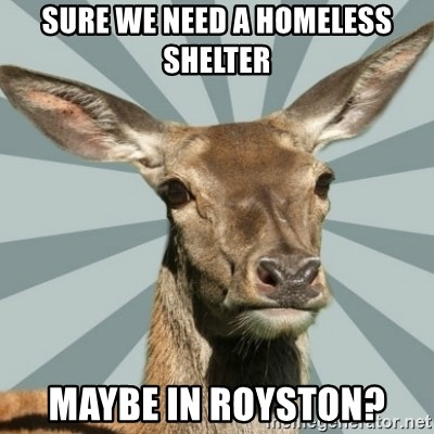 Comox Valley Deer - sure we need a homeless shelter maybe in royston?