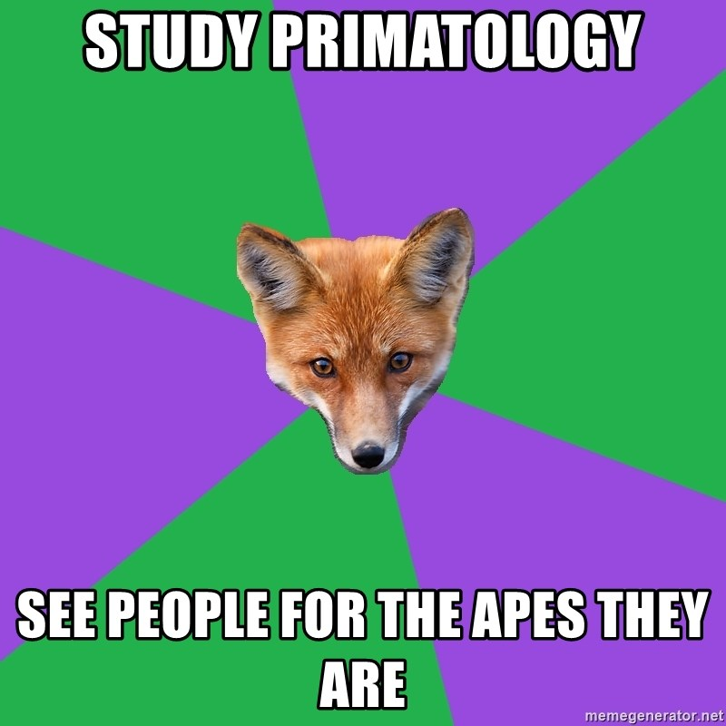 Anthropology Major Fox - Study Primatology See people for the apes they are