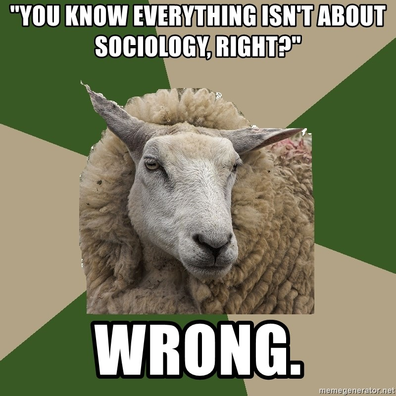 "Sociology Student Sheep - ""You know everything isn't about sociology, right?"" wrong."