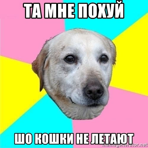 Politically Neutral Dog - та мне похуй  шо кошки не летают