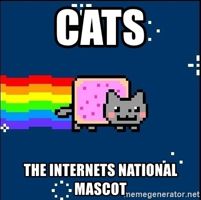 Irresponsible Nyan Cat - CATS The internets national mascot