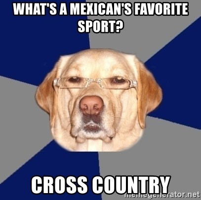 Racist Dawg - What's a mexican's favorite sport? Cross country