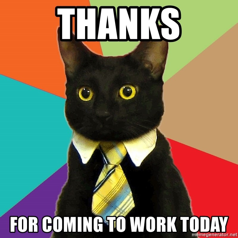 Thanks For coming to work today - Business Cat | Meme ...