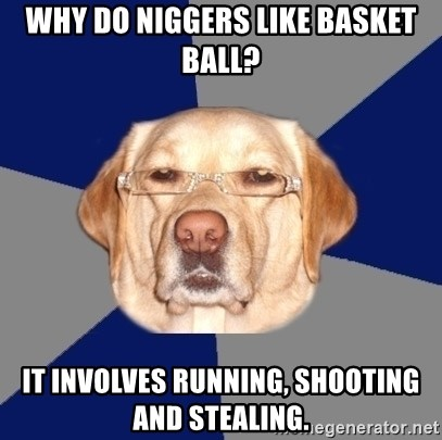 Racist Dawg - Why do niggers like basket ball? It involves running, shooting and stealing.