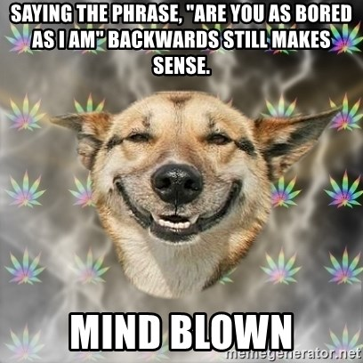 "Stoner Dog - saying The Phrase, ""are you as bored as i am"" backwards still makes sense. Mind Blown"