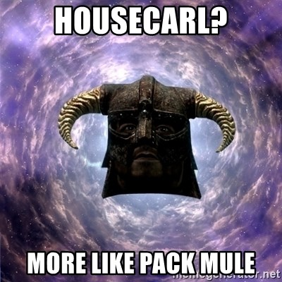 Skyrim - Housecarl? More like pack mule