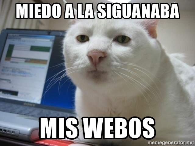 Serious Cat - miedo a la siguanaba mis webos
