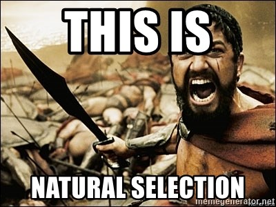 This Is Sparta Meme - THIS IS NATURAL SELECTION