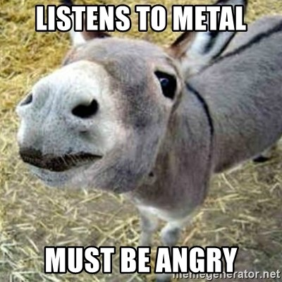 Assumptions Donkey - listens to metal must be angry