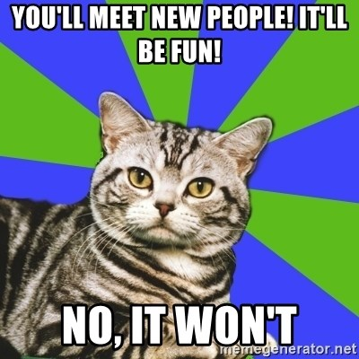 Introvert Cat - You'll meet new people! It'll be fun! No, it won't