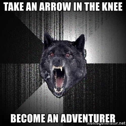 Insanity Wolf - take an arrow in the knee become an adventurer