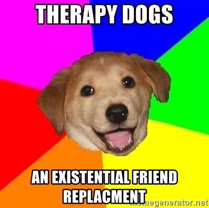 Therapy Dogs An Existential Friend Replacment Advice Dog