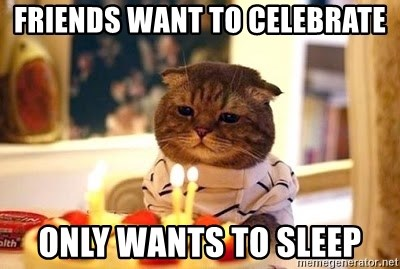 Birthday Cat - friends want to celebrate only wants to sleep