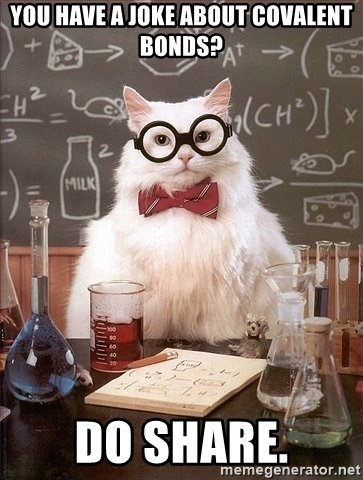 Chemistry Cat - You have a joke about covalent bonds? do share.