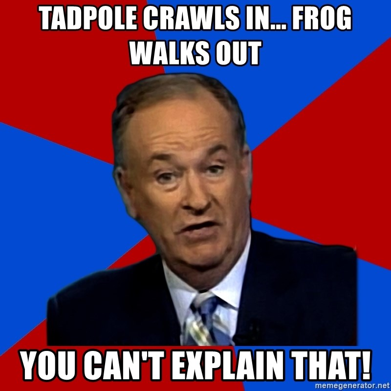 Bill O'Reilly Proves God - tadpole crawls in... frog walks out You can't explain that!