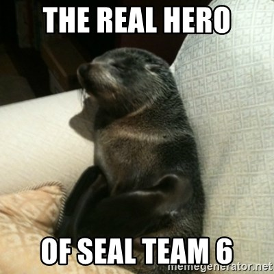 The Real Hero Of Seal Team 6 Baby Seal On Couch Meme Generator