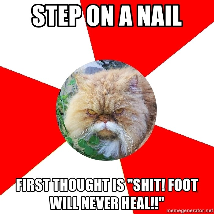 """Diabetic Cat - step on a nail first thought is """"Shit! foot will never heal!!"""""""