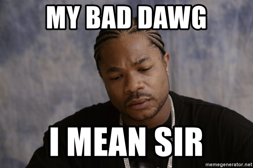 Sad Xzibit - my bad dawg I mean sir