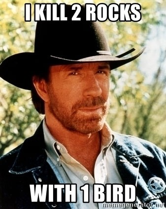 Brutal Chuck Norris - i kill 2 rocks with 1 bird