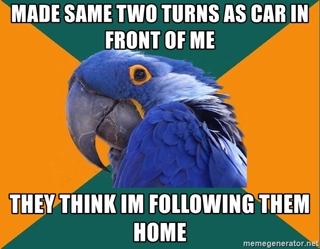 Paranoid Parrot - mADE SAME TWO TURNS AS CAR IN FRONT OF Me thEY THINK IM following them home