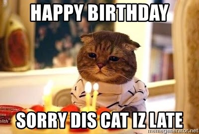 Birthday Cat - Happy birthday sorry dis cat iz late