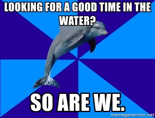 Drama Dolphin - Looking for a good time in the water? So are we.
