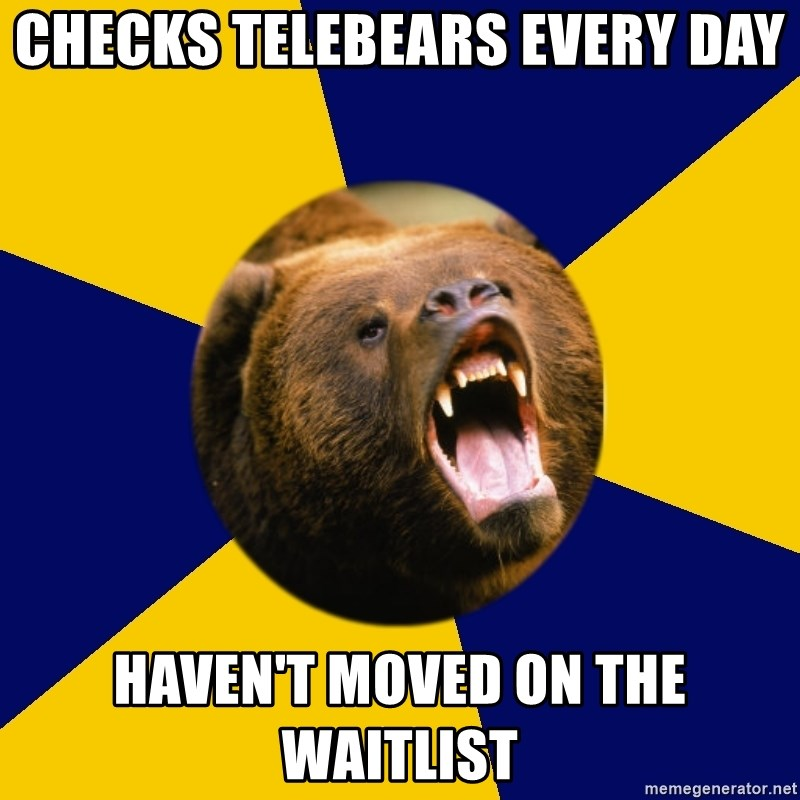 Berkeley Student Bear - Checks telebears every day haven't moved on the waitlist