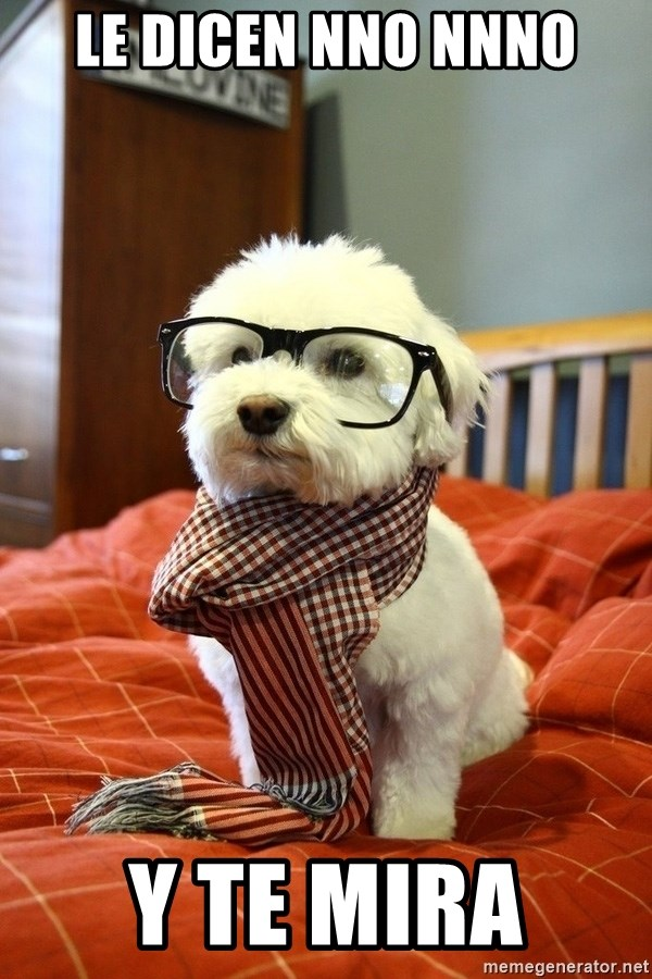hipster dog - le dicen nno nnno y te mira