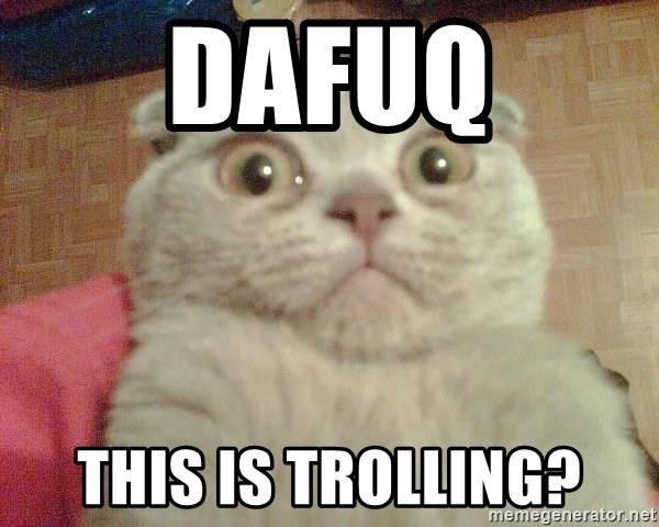 GEEZUS cat - dafuq this is trolling?