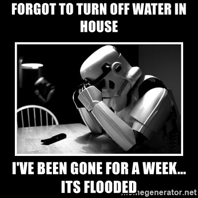 Sad Trooper - Forgot to turn off water in house I've been gone for a week... its flooded