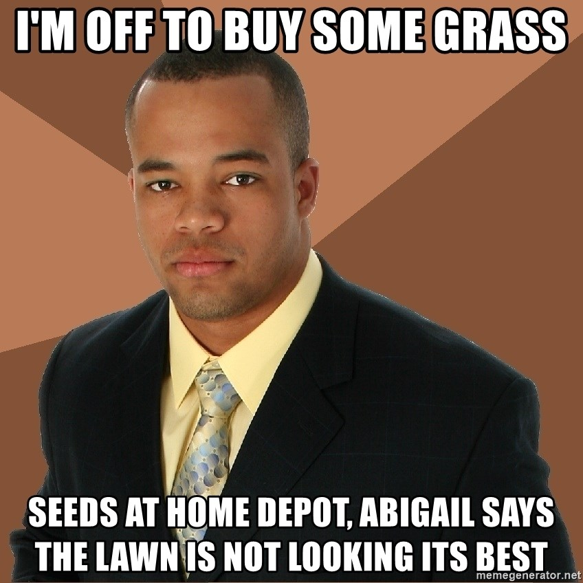 Successful Black Man - I'm off to buy some Grass seeds at home depot, Abigail says the lawn is not looking its best