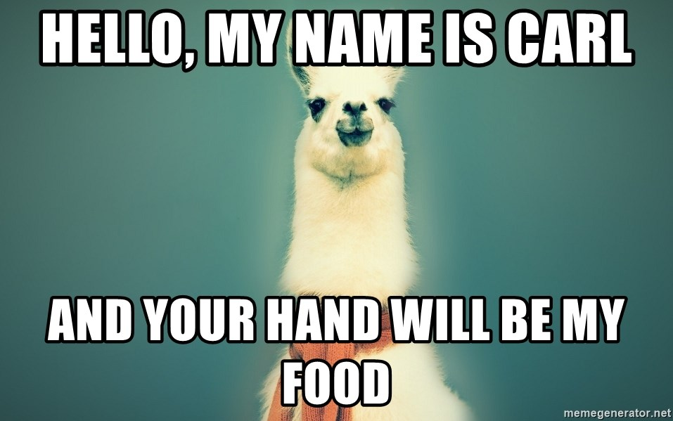 Hello My Name Is Carl And Your Hand Will Be My Food Pancakes