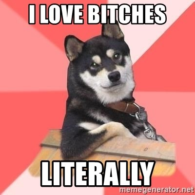 Cool Dog - i love bitches literally