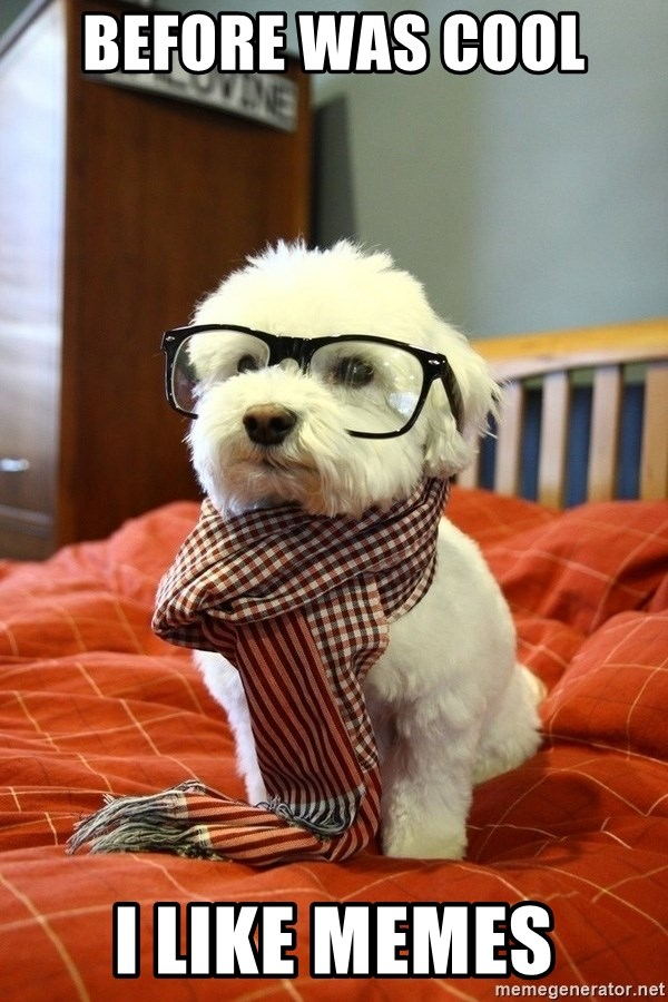 hipster dog - before was cool  i like memes
