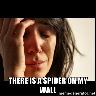 First World Problems - there is a spider on my wall