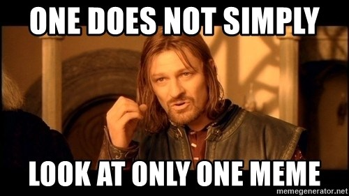Lord Of The Rings Boromir One Does Not Simply Mordor - ONE DOES NOT SIMPLY  LOOK AT ONLY ONE MEME