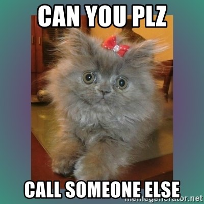 cute cat - can you plz call someone else